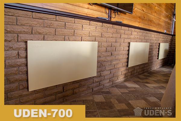 Фото обогревателя Uden-700 в интерьере
